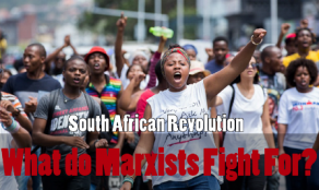 thumb feesmustfall